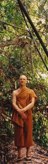 Ajahn Pasanno standing in Dtao Dum Forest