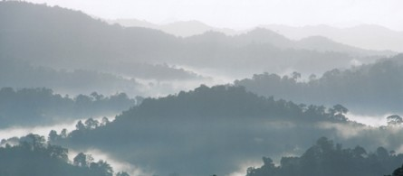Fog rolling off the hills in Dtao Dum Forest on a beautiful morning