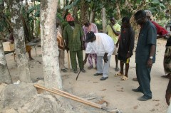 The place to dig the hole for the earth treasure vase is marked under the kola tree